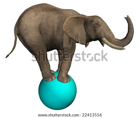 Intelligent Elephant (isolated on white)