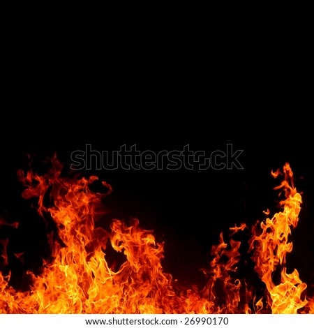 intense and vivid fire on black background - square format - stock photo