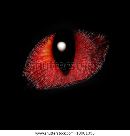 Intense feline eye close up on a dark background - stock photo