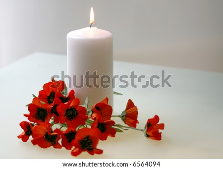 Intentionally soft focus Flanders poppies and candle to commemorate Remembrance, Armistice, Poppy, Veteran's Day - stock photo