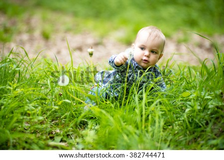 Interested blond baby boy touching white dandelion in green grass on natural background, horizontal photo - stock photo