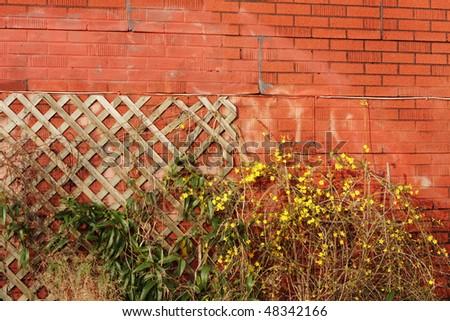 interesting brick wall texture - stock photo
