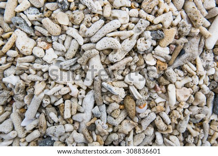interesting texture from a closeup of coral rock - stock photo