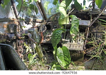 "Interior cockpit view of crashed Russian Antonov An-2 Plane in the Peruvian Amazon. Nicknamed ""Annushka"" or ""Annie"". A single-engine biplane utility/agricultural aircraft designed in the USSR in 1946."
