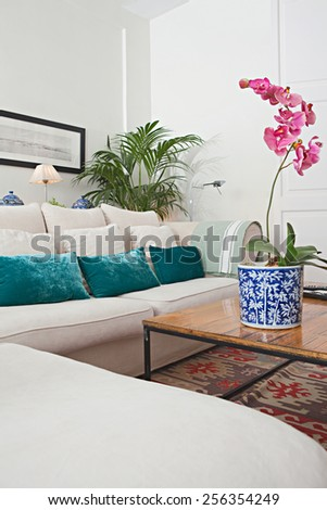 Interior design detail view of a home living room with a white sofa with cushions, plants and flowers, interior view. House indoors with carpets and character design. Tranquil aspirational home space. - stock photo