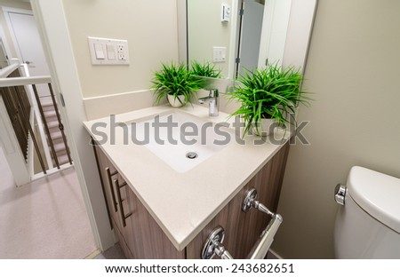 Interior design of a luxury bathroom, washroom with washbasin (sink) and decorative vases with plants on the counter. - stock photo