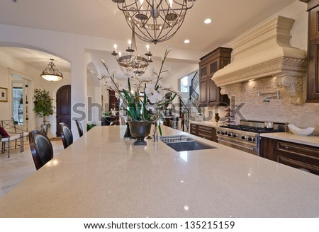 Interior design of a luxury modern kitchen with some flowers in the pot on the counter. - stock photo