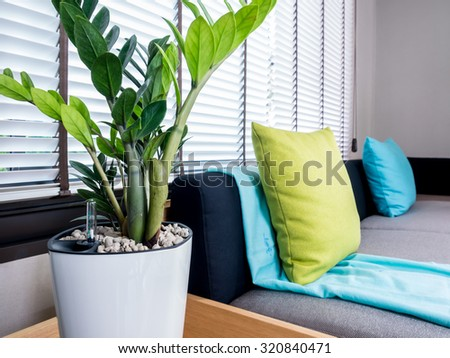 Interior design of couch with flower vase in modern Living room/ home improvment concept - stock photo
