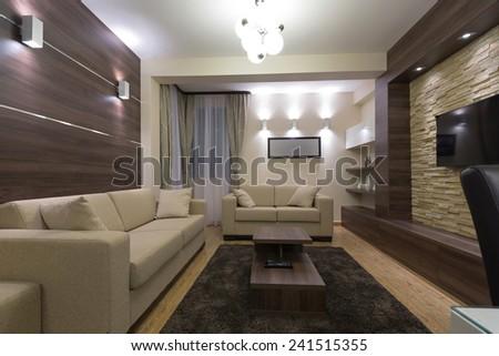 Interior of a luxury living room - stock photo