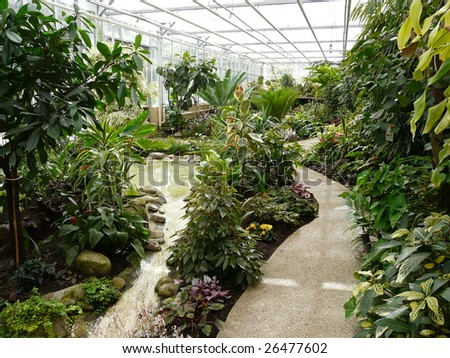 Interior of a tropical greenhouse or hot-house at a Botanical Garden in France - stock photo