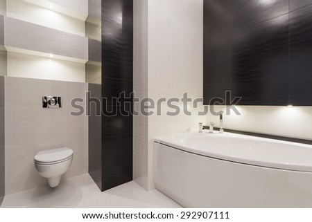 Interior of back and white modern restroom