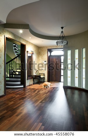 Interior of entrance hall in a new house with sleeping dog - stock photo
