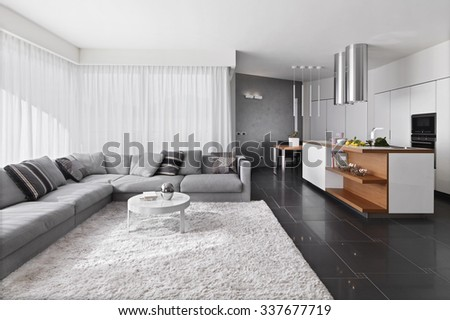 interior view of modern living room with sofa and carpet overlooking on the kitchen - stock photo