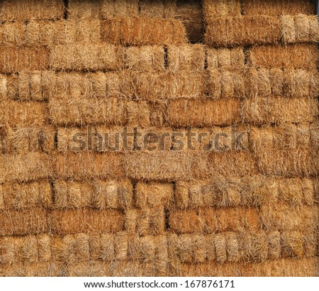 Internal side of a barn. Rural italian hayloft. Straw in the old barn with timber wall. Tuscany agriculture. Italy. - stock photo