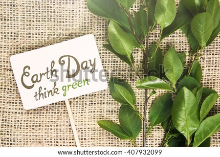 International Mother Earth Day. 22 April. young plant. soft focus. sun light effects filter. - stock photo