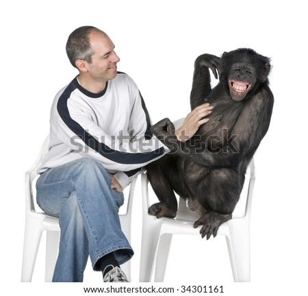 interplay between human and monkey (Mixed-Breed between Chimpanzee and Bonobo) (20 years old) in front of a white background