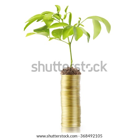 Investment concept, Coins the market  - stock photo