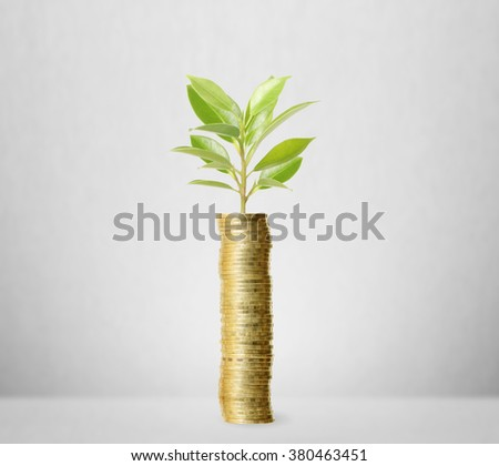 Investment concept, Coins the market