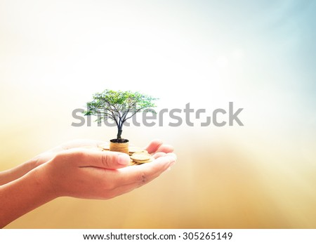 Investment concept. ROI Insurred Idea Market Seed Bank CSR Trust Wealth Day Debt Food Hope Nature Dollar Support Charity Safety World City Cash Grow Future Deposit Save Bonus Preserve Gains Small - stock photo