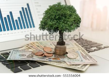 investment concept tree grow on moneyの写真素材 ロイヤリティフリー