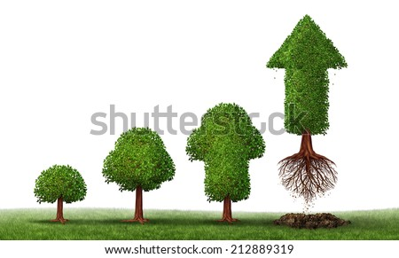 Investment maturity success as a business concept for growing wealth as a small tree gradually turning into a mature flying arrow plant as a financial metaphor for a successful investing on white. - stock photo