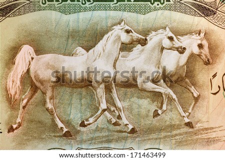 IRAQ - CIRCA 1978: Arabian Horses on 25 Dinars 1978 Banknote from Iraq. - stock photo