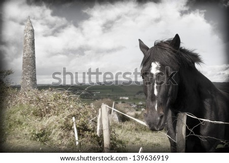 Irish horse and ancient round tower in the beautiful Ardmore countryside of county Waterford Ireland - stock photo