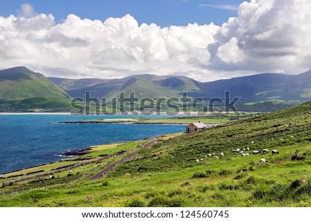 Irish Landscape - stock photo