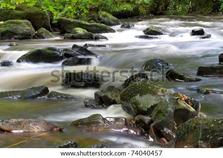Irish nature - stock photo
