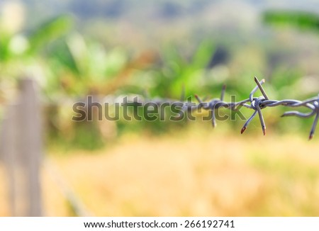 iron barbed wire fence of the farm  - stock photo