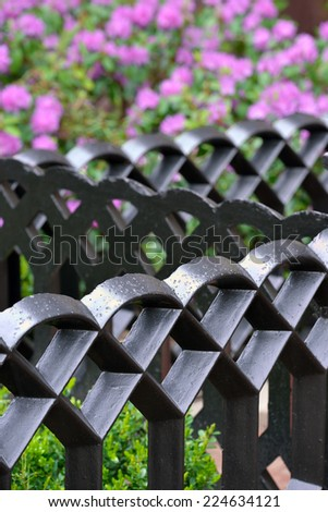 Iron Fence Detail - stock photo