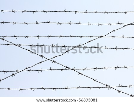 iron-wire hedge