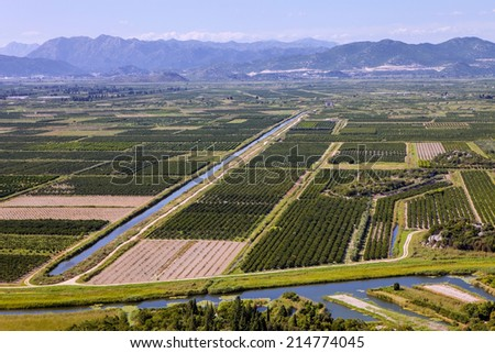 irrigated agricultural landscape, Croatia - stock photo