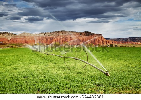 Irrigated agriculture in desert, farm in Utah, USA