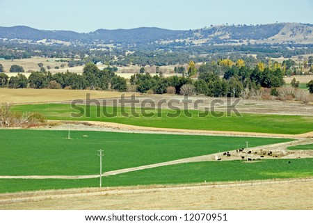 Irrigated paddocks, in a drought-stricken region of New South Wales, Australia - stock photo