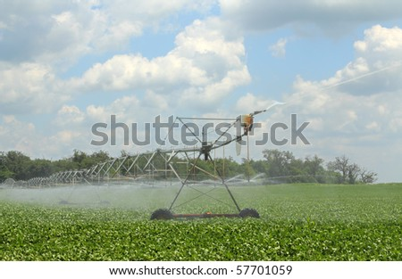 Irrigating a green soybean field against a blue sky with clouds - stock photo