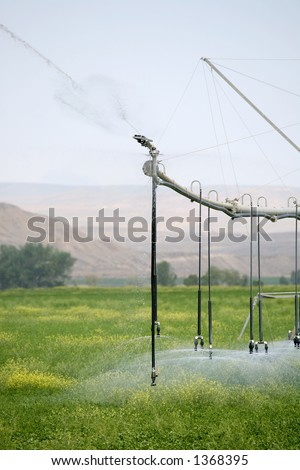 irrigation - automated linear sprinkler system  in operation - stock photo