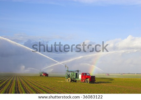 Irrigation machine waters crop on the field - stock photo