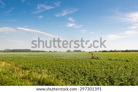 Irrigation of a potato field with an intermittent mobile irrigation system on a warm and sunny day in the summer season.