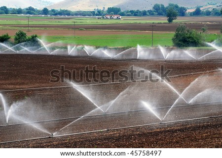 irrigation of agricultural field - stock photo