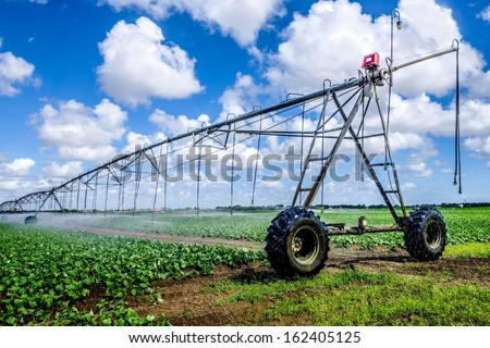 Irrigation of farmland to ensure the quality of the crop - stock photo
