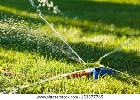 Irrigation of green grass with garden sprinkler