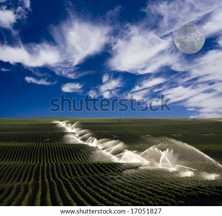 Irrigation on farm - stock photo