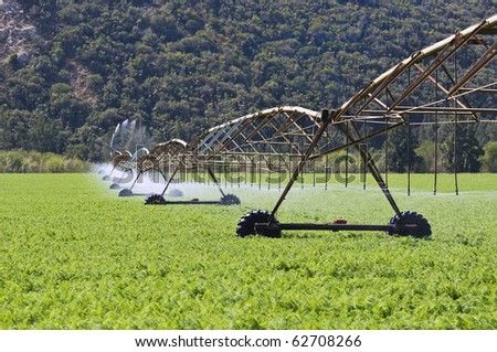 Irrigation pivot system watering a carrot field on a farm - stock photo