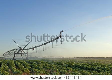 irrigation sprinkler - stock photo