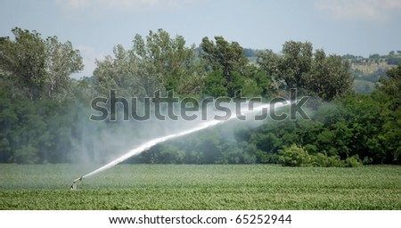 Irrigation system pumping water on a wheat field, Italy - stock photo