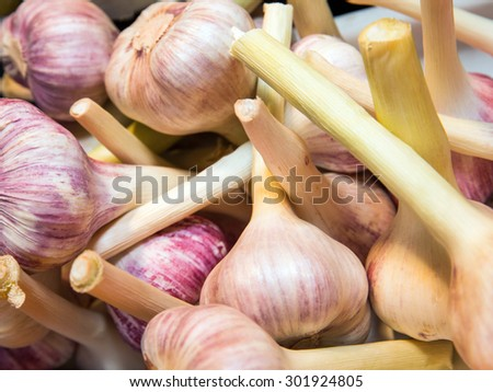 Is young garlic. Background on store shelves - stock photo
