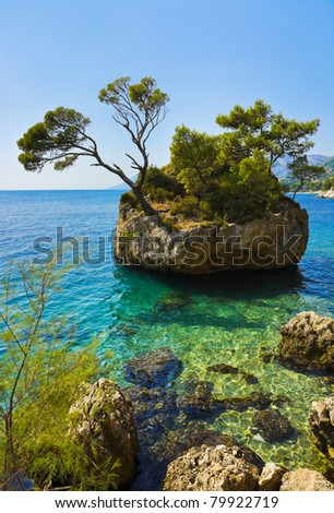 Island and trees in Brela, Croatia - nature vacations background