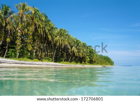 Island beach taken from the water surface with lush tropical vegetation, Bocas del Toro, Caribbean sea, Zapatillas Keys, Panama - stock photo