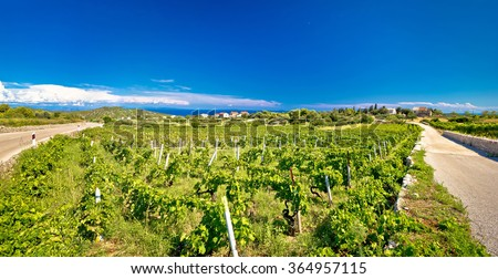 Island of Vis vineyards panorama, Dalmatia, Croatia
